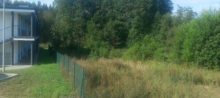 Kościerzyna, Wierzysko